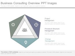 Business Consulting Overview Ppt Images