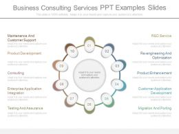 Business Consulting Services Ppt Examples Slides