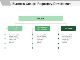 Business Context Regulatory Development Planning Resources Allocation Direct Services