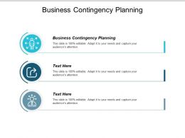 Business Contingency Planning Ppt Powerpoint Presentation Infographics Layouts Cpb