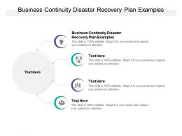Business Continuity Disaster Recovery Plan Examples Ppt Powerpoint Presentation Aids Cpb
