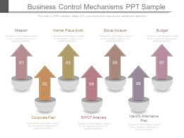 Business Control Mechanisms Ppt Sample