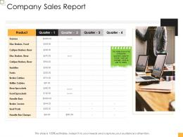 Business Controlling Company Sales Report Ppt Introduction