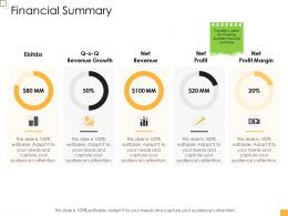 Business Controlling Financial Summary Ppt Portrait