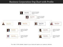 Business Corporation Org Chart With Profile