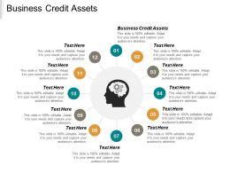 Business Credit Assets Ppt Powerpoint Presentation Gallery Pictures Cpb