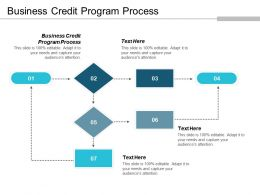 Business Credit Program Process Ppt Powerpoint Presentation Gallery Outline Cpb
