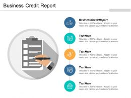 Business Credit Report Ppt Powerpoint Presentation Model Outfit Cpb