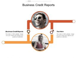Business Credit Reports Ppt Powerpoint Presentation Gallery Design Templates Cpb