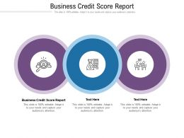 Business Credit Score Report Ppt Powerpoint Presentation Model Graphic Tips Cpb