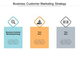 Business Customer Marketing Strategy Ppt Powerpoint Presentation Ideas Cpb