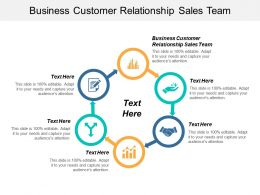 Business Customer Relationship Sales Team Ppt Powerpoint Presentation Gallery Slides Cpb