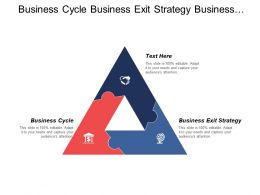 Business Cycle Business Exit Strategy Business Operational Plan Cpb