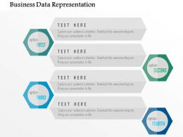 Business Data Representation Flat Powerpoint Design