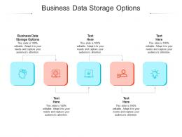 Business Data Storage Options Ppt Powerpoint Presentation File Show Cpb