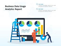 Business Data Usage Analytics Report
