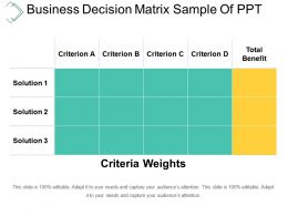 Business Decision Matrix Sample Of Ppt