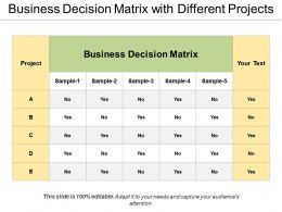 Business Decision Matrix With Different Projects