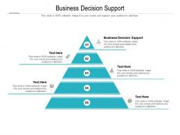 Business Decision Support Ppt Powerpoint Presentation Inspiration Cpb