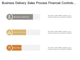 Business Delivery Sales Process Financial Controls Management Business Relationship