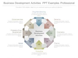 Business Development Activities Ppt Examples Professional