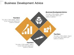 Business Development Advice Ppt Powerpoint Presentation File Samples Cpb