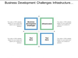 Business Development Challenges Infrastructure Finance Management International Strategy Cpb
