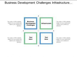 Business Development Challenges Infrastructure Finance Management International Strategy Cpb