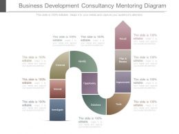 Business Development Consultancy Mentoring Diagram