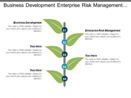 Business Development Enterprise Risk Management Social Media Marketing Cpb