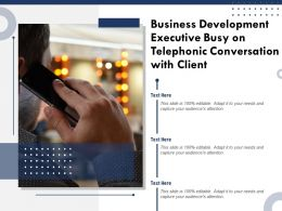 Business Development Executive Busy On Telephonic Conversation With Client