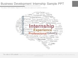 Business Development Internship Sample Ppt