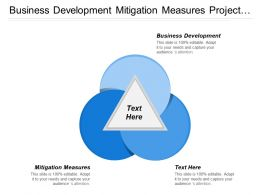 Business Development Mitigation Measures Project Management General Management