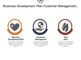 Business Development Plan Customer Management Multi Channel Management