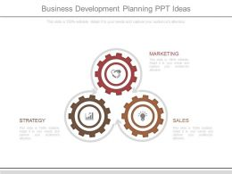 Business Development Planning Ppt Ideas