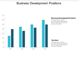 Business Development Positions Ppt Powerpoint Presentation File Professional Cpb