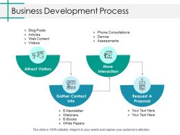 Business Development Process Ppt Infographics Templates