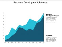 Business Development Projects Ppt Powerpoint Presentation File Show Cpb