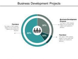Business Development Projects Ppt Powerpoint Presentation Infographics Cpb