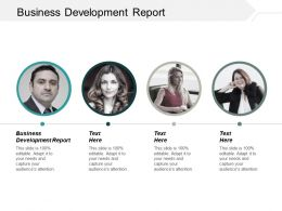 Business Development Report Ppt Powerpoint Presentation Portfolio Samples Cpb
