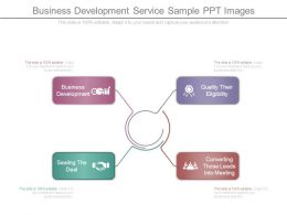 Business Development Service Sample Ppt Images