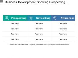 Business Development Showing Prospecting Networking And Awareness