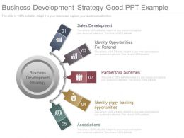 Business Development Strategy Good Ppt Example