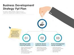 Business Development Strategy Ppt Plan