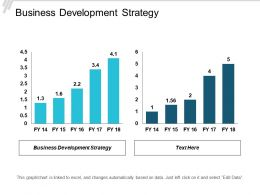 Business Development Strategy Ppt Powerpoint Presentation Gallery Ideas Cpb