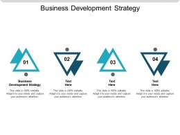 Business Development Strategy Ppt Powerpoint Presentation Slides Rules Cpb