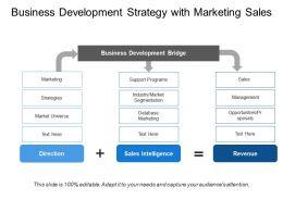 Business Development Strategy With Marketing Sales