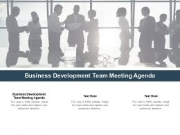 Business Development Team Meeting Agenda Ppt Powerpoint Presentation Inspiration Cpb