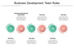 Business Development Team Roles Ppt Powerpoint Presentation Show Graphics Design Cpb