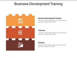 Business Development Training Ppt Powerpoint Presentation Styles Infographics Cpb